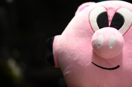 cute stinky the pig 450x298 Cute pigs. Cute pigs? CUTE PIGS? Say what?